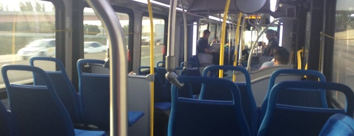Miami-Dade Transit - Metrobus Route 195 (e95 Express) is one of My favorite places :).