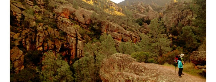Pinnacles National Park is one of National Parks.