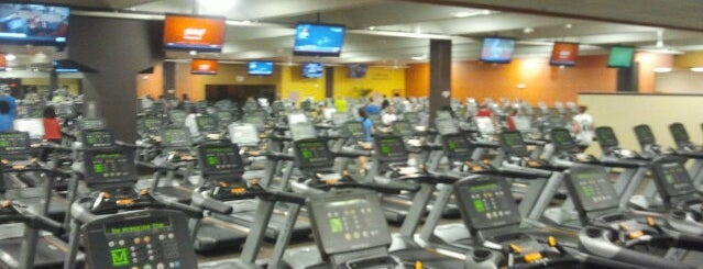 The most popular gyms in the u s for Gimnasio xperience
