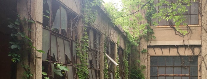 Ellis Island is one of 13 Abandoned, Creepy, and Otherwise Spooky Places.