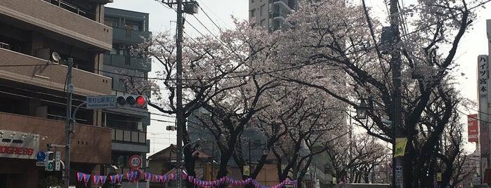 東村山駅東口交差点 is one of 喫煙所.