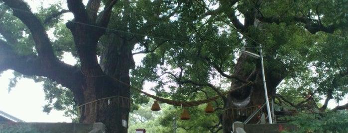 山王神社 is one of 長崎市 観光スポット.