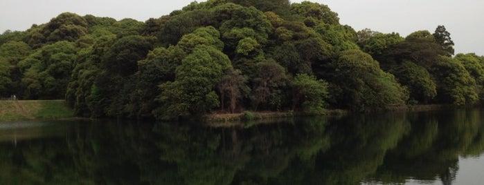 崇神天皇 山邊道勾岡上陵 (柳本行燈山古墳) is one of 天皇陵.