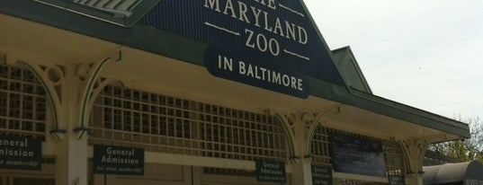 Maryland Zoo in Baltimore is one of To-Do with Mike.
