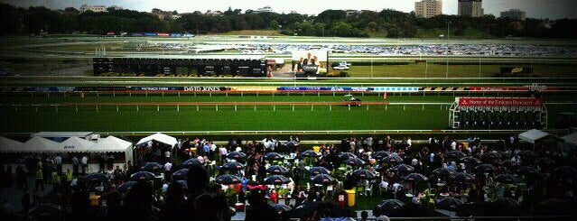 Royal Randwick Racecourse is one of Essential Sydney.