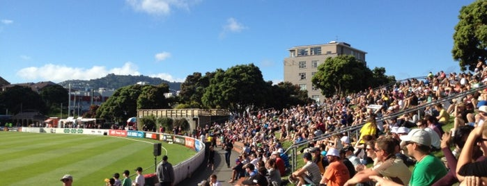 Basin Reserve is one of The coolest little capital in the world.
