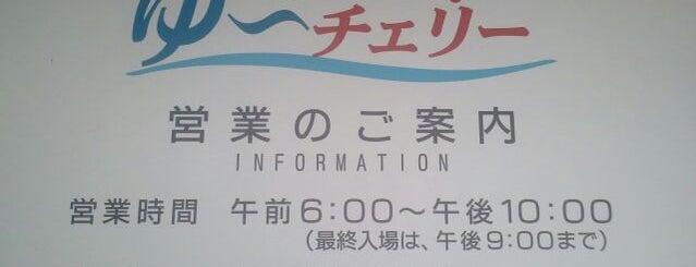 寒河江花咲か温泉 ゆ~チェリー is one of 俺の日帰り温泉(仮).