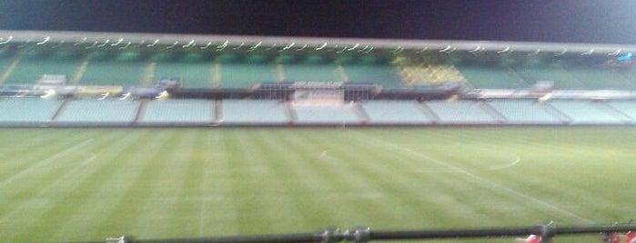 Pirtek Stadium is one of Soccer.