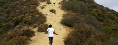 Runyon Canyon Park is one of WERK Out.