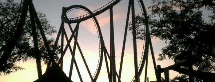 The Incredible Hulk Coaster is one of Florida Trip '12.