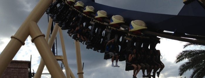 Montu is one of Florida Rides 2012.