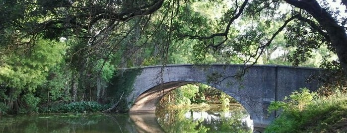 Audubon Park is one of New Orleans Things to Do.