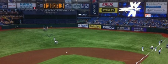 Tropicana Field is one of MLB Stadiums.