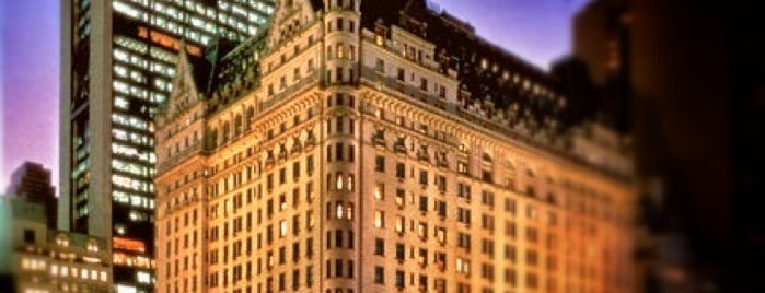 The Plaza Hotel is one of Central Park.