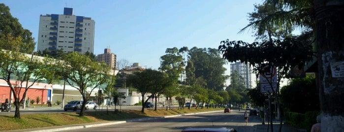 Avenida Luís Dumont Villares is one of Principais Avenidas de São Paulo.