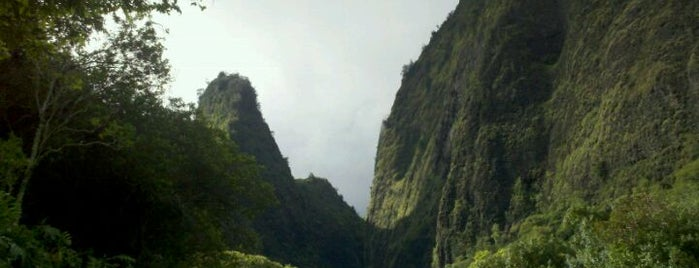 ʻĪao Valley State Park is one of Cats in Hawai'i.