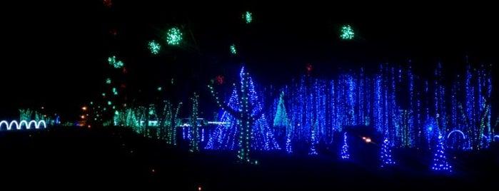 Shadrack's Christmas Wonderland is one of Nash Life.