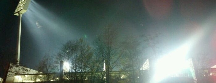Vonovia Ruhrstadion is one of Stadiums.