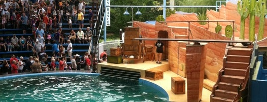 Aquatheatre is one of Favorite Arts & Entertainment.