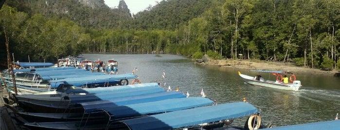The Kilim Karst Geoforest Park is one of ท่องเที่ยวที่ Langkawi, Kedah.