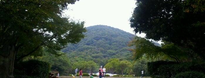 甲山森林公園 is one of 公園.