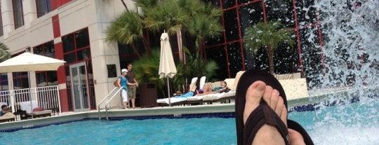 Sofitel Miami is one of Mis lugares más queridos !.