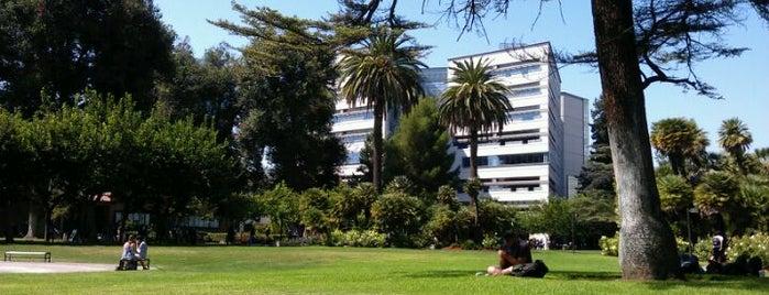San Jose State University is one of SJSU Life.