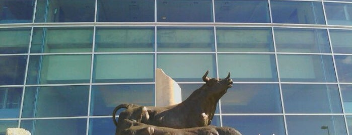 NRG Stadium is one of Best Stadiums.
