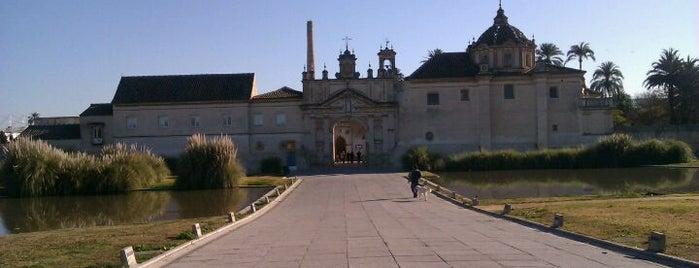 Monastery of the Cartuja is one of 101 cosas que ver en Andalucía antes de morir.
