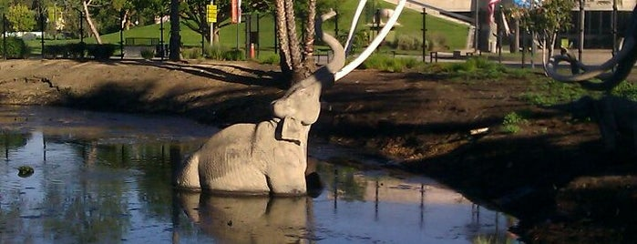 La Brea Tar Pits is one of Los Angeles by an LA Local.