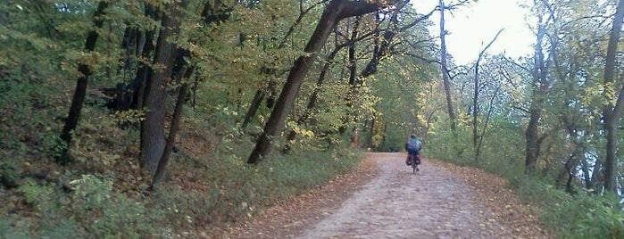 Howard M. Temin Lakeshore Path is one of Fresh Air Around Madison, WI.