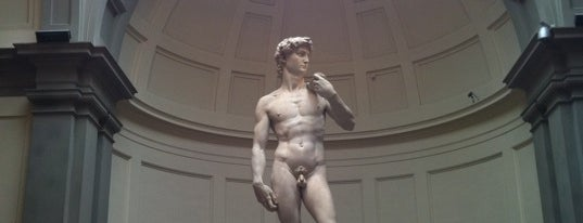 David di Michelangelo is one of Firenze (Florence).