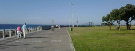 Sea Point Beach Promenade is one of Best places in Cape Town, South Africa.