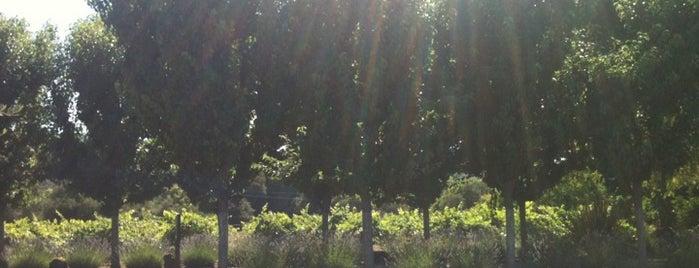 Passalacqua Winery is one of Gorgeous, Burgeoning Wine Road Gardens.