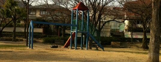 松ヶ丘公園 is one of 公園.