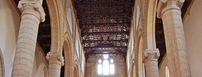Real Colegiata de Santa María la Mayor is one of 101 cosas que ver en Andalucía antes de morir.