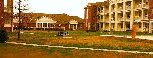 La Maison du Bayou appts is one of Nicholls State University.