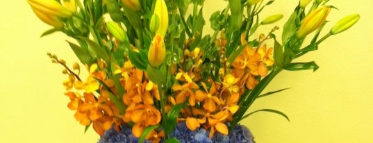 dr delphinium designs & events florist is one of * Gr8 Service Companies In Dallas (Misc.).