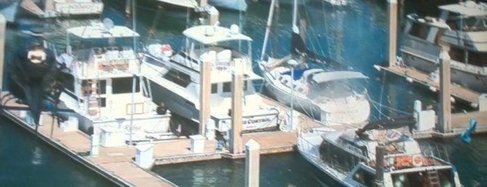 Crandon Marina is one of The Layover: Miami.