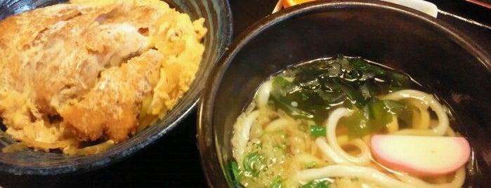 大智うどん is one of 地域振興 豊橋カレーうどん.