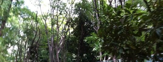 Sengenyama Park is one of 歴史(明治~).