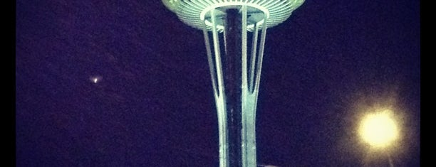 Space Needle is one of 7 Man Made Wonders of the US.