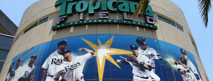 Tropicana Field is one of MLB Baseball Stadiums.