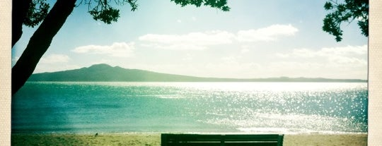 Mission Bay is one of New Zealand.
