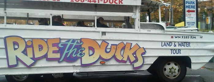 Ride the Ducks is one of Seattle Tourism.