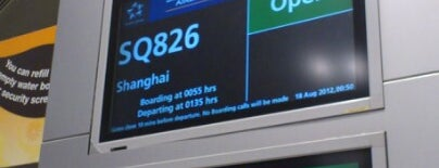 Gate B6 is one of SIN Airport Gates.