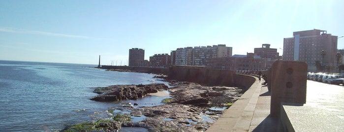 Rambla Gran Bretaña is one of Montevideo City Badge - Mateína.