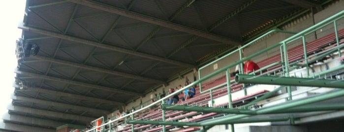 Rudolf Tonn Stadion is one of Stadium.