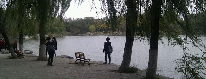 北京大学 Peking University is one of The Real Beijing.