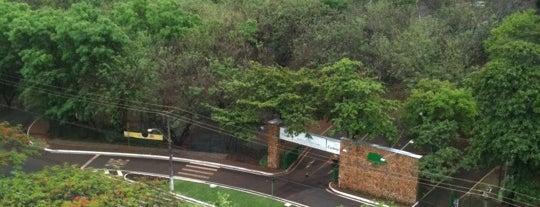 Parque Prefeito Luiz Roberto Jábali (Curupira) is one of Places I frequent in Ribeirão Preto, Brasil.